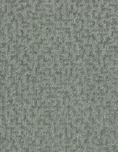 Shaw Floors Bellera Emergence Net Sea Glass 00300_5E017
