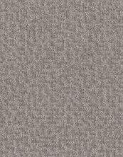 Shaw Floors Bellera Emergence Net Platinum 00500_5E017