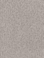 Shaw Floors Bellera Emergence Net Sterling 00501_5E017