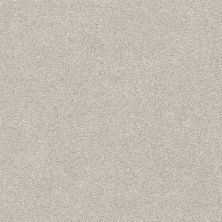 Shaw Floors Value Collections Fyc Ns I Net Chill In The Air (s) 126S_5E018