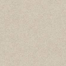 Shaw Floors Value Collections Fyc Ns I Net Sand Castle (s) 127S_5E018