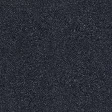 Shaw Floors Value Collections Fyc Ns I Net Star Gazing (s) 433S_5E018