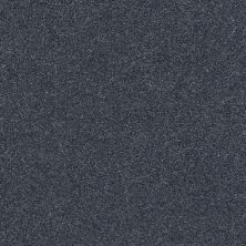 Shaw Floors SFA Fyc Ns I Net Washed Indigo (s) 440S_5E018