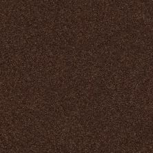 Shaw Floors Value Collections Fyc Ns I Net Chocolate Treat (s) 707S_5E018