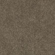 Shaw Floors Value Collections Fyc Ns I Net Summer House (s) 708S_5E018