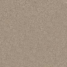 Shaw Floors Value Collections Fyc Ns I Net Dockside View (s) 722S_5E018