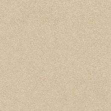 Shaw Floors SFA Fyc Ns II Net Sun Kissed (s) 110S_5E019