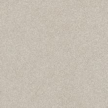 Shaw Floors Value Collections Fyc Ns II Net Shoreline Haze (s) 128S_5E019