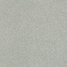 Shaw Floors Value Collections Fyc Ns II Net Distant Valley (s) 307S_5E019