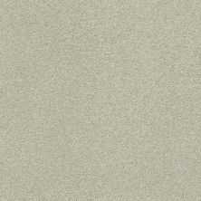 Shaw Floors Value Collections Fyc Ns II Net Willow Tree (s) 330S_5E019