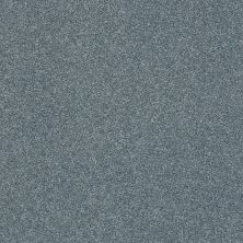 Shaw Floors Value Collections Fyc Ns II Net Tropical Hideaway (s) 431S_5E019