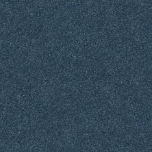 Shaw Floors Value Collections Fyc Ns II Net Twilight Golf (s) 434S_5E019