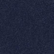 Shaw Floors Value Collections Fyc Ns II Net Sail Away (s) 436S_5E019
