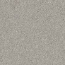 Shaw Floors Value Collections Fyc Ns II Net Restful Day (s) 512S_5E019