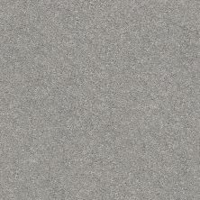 Shaw Floors Value Collections Fyc Ns II Net Cool Breeze (s) 525S_5E019
