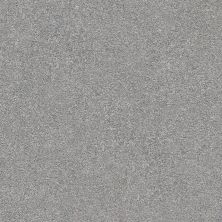 Shaw Floors Value Collections Fyc Ns II Net Misty Rain (s) 529S_5E019