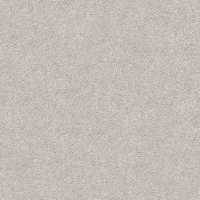Shaw Floors Value Collections Fyc Ns II Net Dreamy (s) 537S_5E019