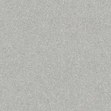 Shaw Floors SFA Fyc Ns II Net Polished Silver (s) 538S_5E019
