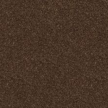 Shaw Floors SFA Fyc Ns II Net Chocolate Treat (s) 707S_5E019