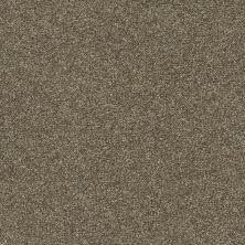 Shaw Floors Value Collections Fyc Ns II Net Summer House (s) 708S_5E019