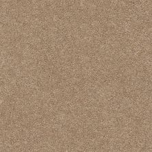 Shaw Floors Value Collections Fyc Ns II Net Falling Leaves (s) 720S_5E019