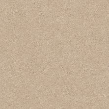 Shaw Floors Value Collections Fyc Ns II Net Walk On The Beach (s) 721S_5E019