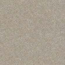 Shaw Floors Value Collections Fyc Ns II Net Back Patio (s) 724S_5E019