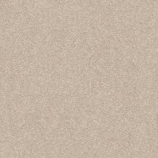 Shaw Floors Value Collections Fyc Ns II Net My Haven (s) 743S_5E019