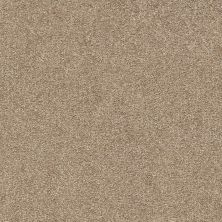 Shaw Floors Value Collections Fyc Ns II Net Camping Trip (s) 749S_5E019