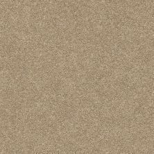 Shaw Floors Value Collections Fyc Ns II Net Honey Tea (s) 750S_5E019