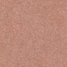 Shaw Floors Value Collections Fyc Ns II Net Open The Rose' (s) 802S_5E019