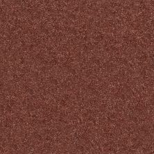Shaw Floors Value Collections Fyc Ns II Net Serene Sunset (s) 804S_5E019