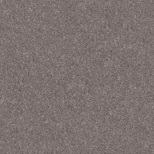 Shaw Floors Value Collections Fyc Ns II Net Lilac Field (s) 901S_5E019
