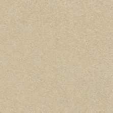 Shaw Floors Value Collections Fyc Ns Blue Net Sun Kissed (s) 110S_5E020