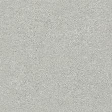Shaw Floors Value Collections Fyc Ns Blue Net Chill In The Air (s) 126S_5E020