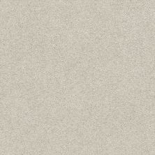Shaw Floors Value Collections Fyc Ns Blue Net Sand Castle (s) 127S_5E020