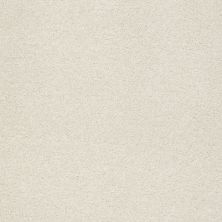 Shaw Floors Value Collections Fyc Ns Blue Net Champagne Toast (s) 153S_5E020