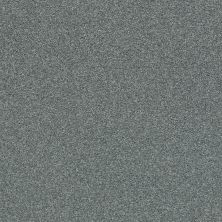 Shaw Floors Value Collections Fyc Ns Blue Net Cottage Garden (s) 308S_5E020