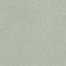 Shaw Floors Value Collections Fyc Ns Blue Net Willow Tree (s) 330S_5E020