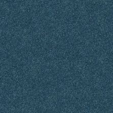 Shaw Floors Value Collections Fyc Ns Blue Net Twilight Golf (s) 434S_5E020