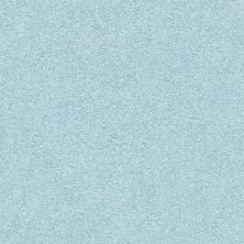 Shaw Floors Value Collections Fyc Ns Blue Net Winter Sky (s) 437S_5E020