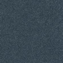 Shaw Floors Value Collections Fyc Ns Blue Net Washed Indigo (s) 440S_5E020