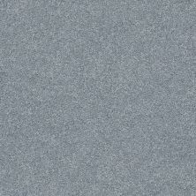 Shaw Floors Value Collections Fyc Ns Blue Net Dolphin Sighting (s) 510S_5E020