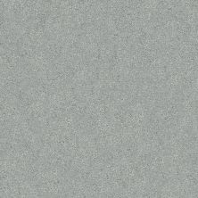 Shaw Floors Value Collections Fyc Ns Blue Net Restful Day (s) 512S_5E020