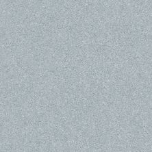 Shaw Floors Value Collections Fyc Ns Blue Net Polished Silver (s) 538S_5E020