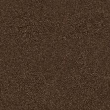 Shaw Floors Value Collections Fyc Ns Blue Net Chocolate Treat (s) 707S_5E020