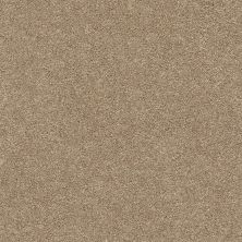 Shaw Floors Value Collections Fyc Ns Blue Net Falling Leaves (s) 720S_5E020