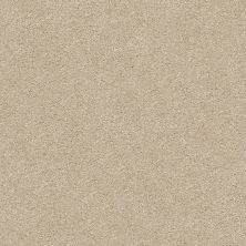 Shaw Floors Value Collections Fyc Ns Blue Net Walk On The Beach (s) 721S_5E020
