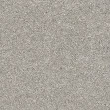 Shaw Floors Value Collections Fyc Ns Blue Net Back Patio (s) 724S_5E020