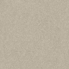 Shaw Floors Value Collections Fyc Ns Blue Net My Haven (s) 743S_5E020